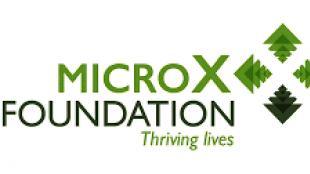 [GSEF SSE Youth Camp for SSE]: Micro X Foundation