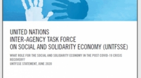 What role for the Social and Solidarity Economy in the post COVID-19 crisis recovery?